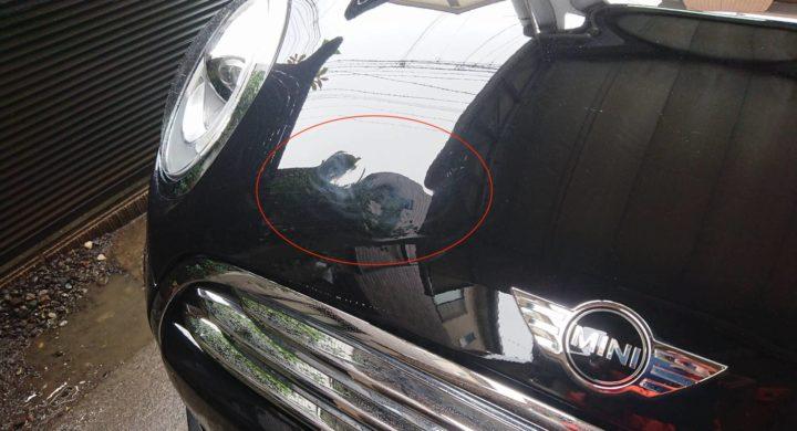 BMWミニ/難しいボンネットの凹み修理も佐藤自動車でお任せください!